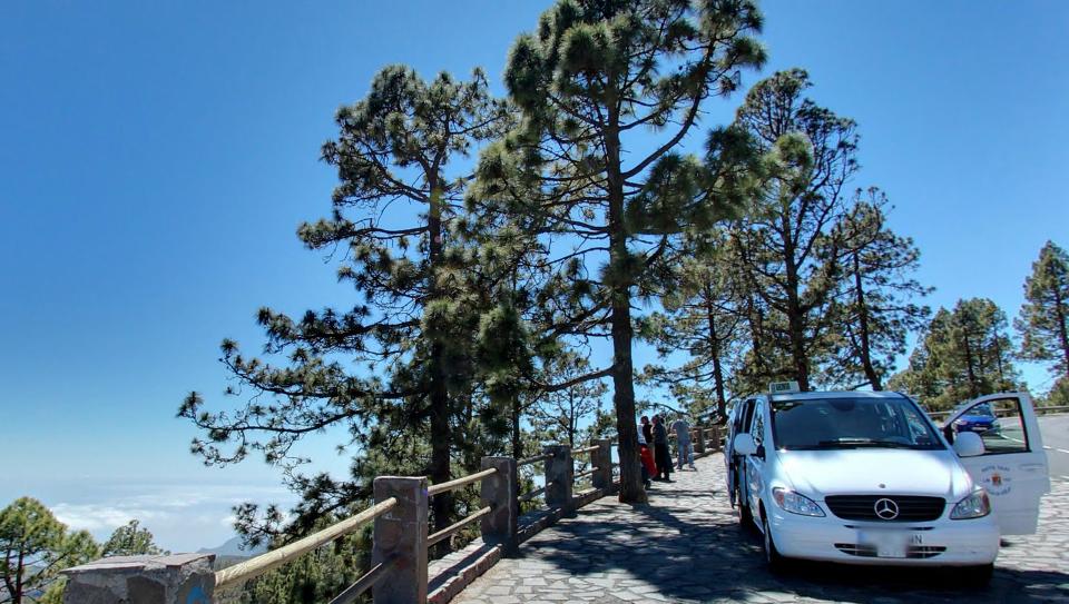 Vehiculos de 8 plazas para excursiones o grupos